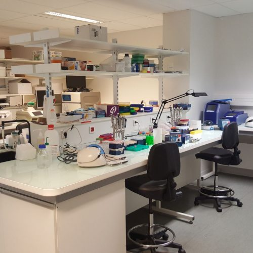 Single cell sequencing